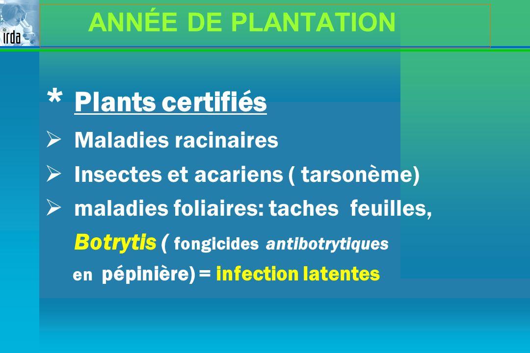 * Plants certifiés ANNÉE DE PLANTATION Maladies racinaires