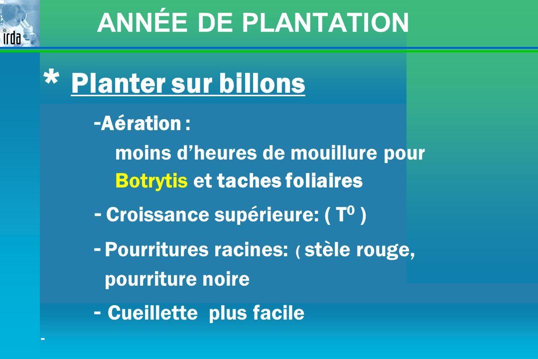 * Planter sur billons ANNÉE DE PLANTATION -Aération :
