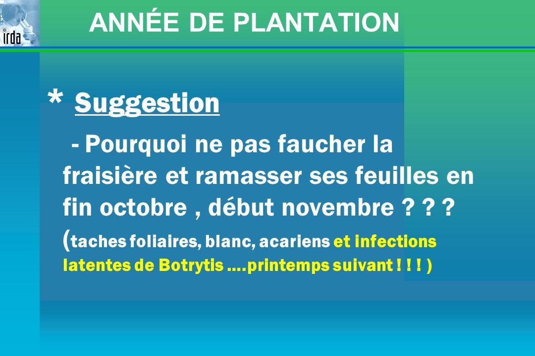 * Suggestion ANNÉE DE PLANTATION