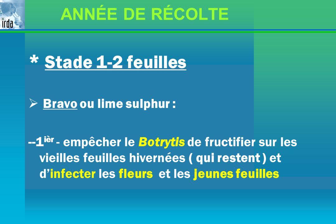 * Stade 1-2 feuilles ANNÉE DE RÉCOLTE Bravo ou lime sulphur :