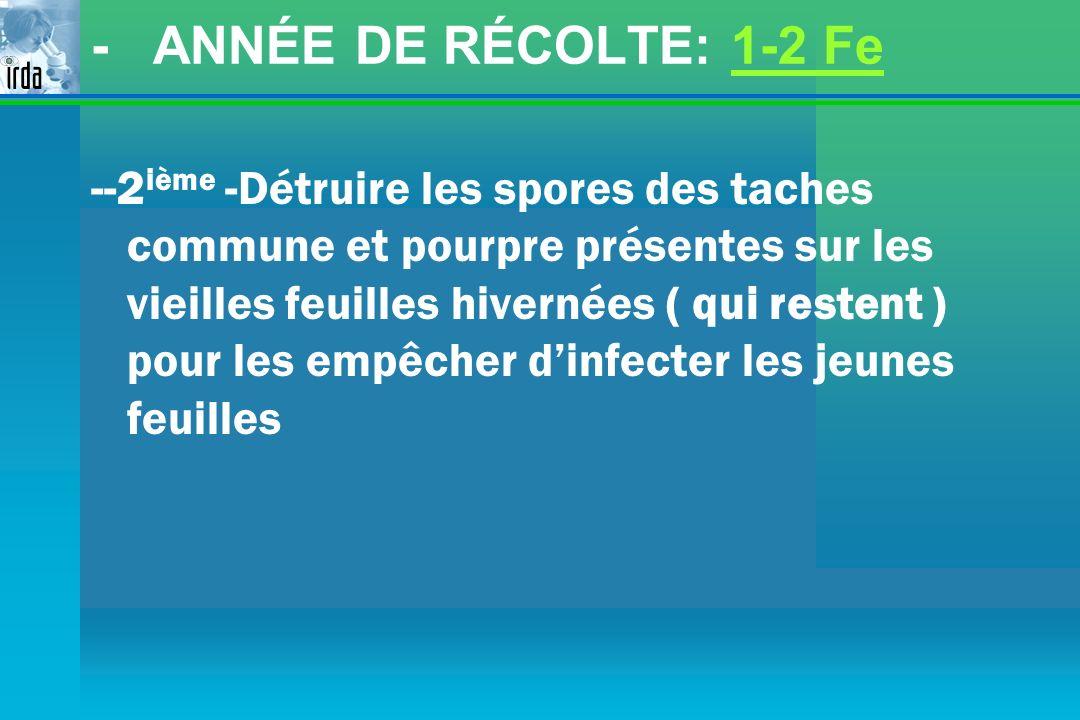 - ANNÉE DE RÉCOLTE: 1-2 Fe