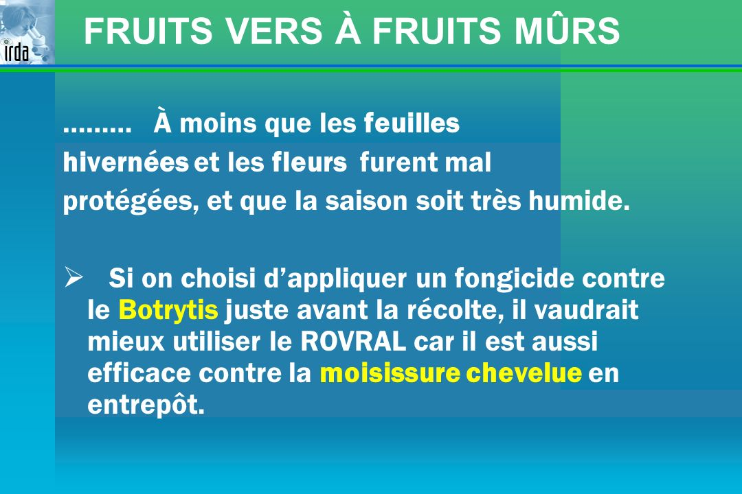 FRUITS VERS À FRUITS MÛRS