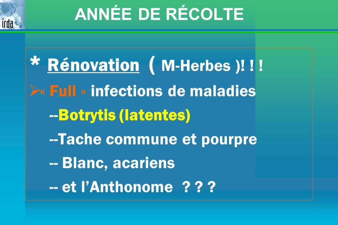 * Rénovation ( M-Herbes )! ! !