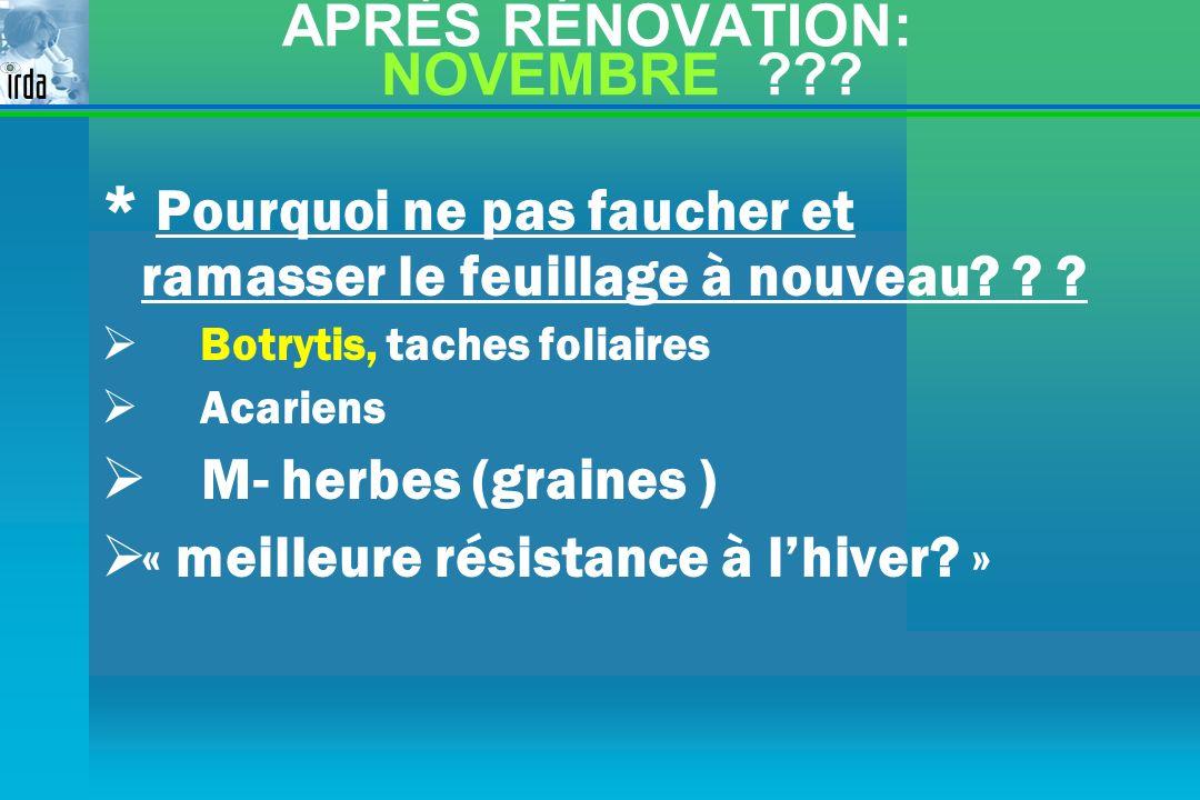 APRÈS RÉNOVATION: NOVEMBRE