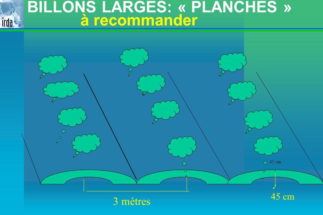 BILLONS LARGES: « PLANCHES » à recommander