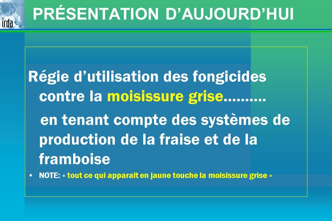 PRÉSENTATION D'AUJOURD'HUI