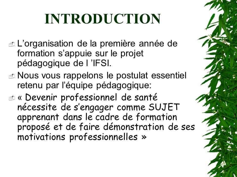 INTRODUCTION L'organisation de la première année de formation s'appuie sur le projet pédagogique de l 'IFSI.