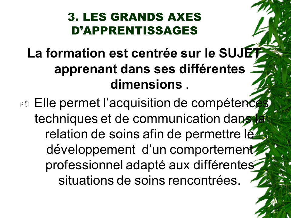 3. LES GRANDS AXES D'APPRENTISSAGES