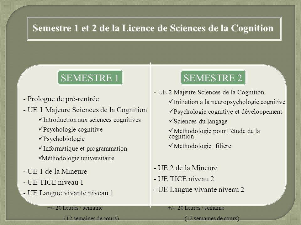 Semestre 1 et 2 de la Licence de Sciences de la Cognition