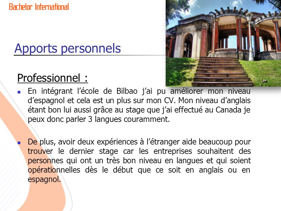 Apports personnels Professionnel :