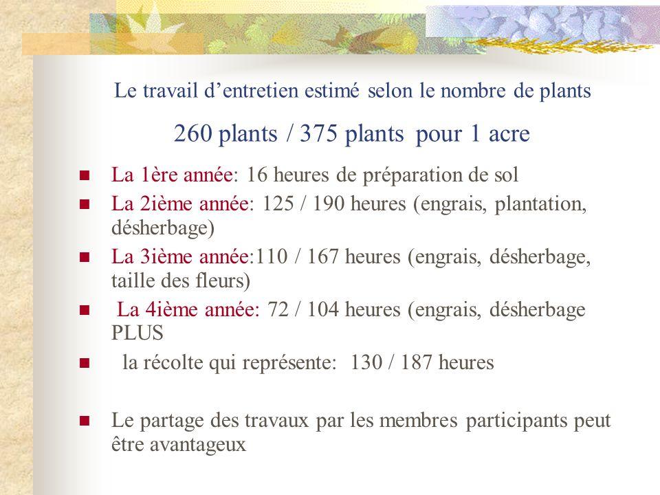 Le travail d'entretien estimé selon le nombre de plants 260 plants / 375 plants pour 1 acre
