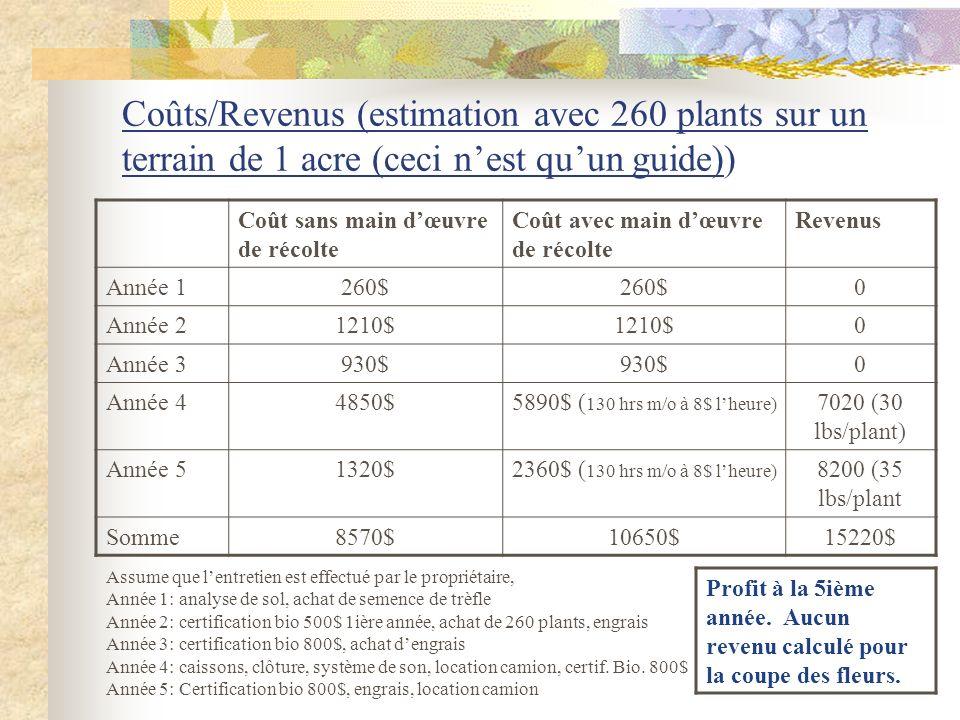 Coûts/Revenus (estimation avec 260 plants sur un terrain de 1 acre (ceci n'est qu'un guide))