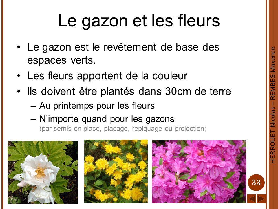 Le gazon et les fleurs Le gazon est le revêtement de base des espaces verts. Les fleurs apportent de la couleur.