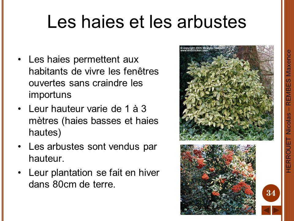 Les haies et les arbustes