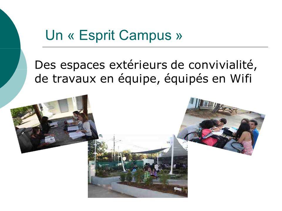 Un « Esprit Campus » Des espaces extérieurs de convivialité, de travaux en équipe, équipés en Wifi