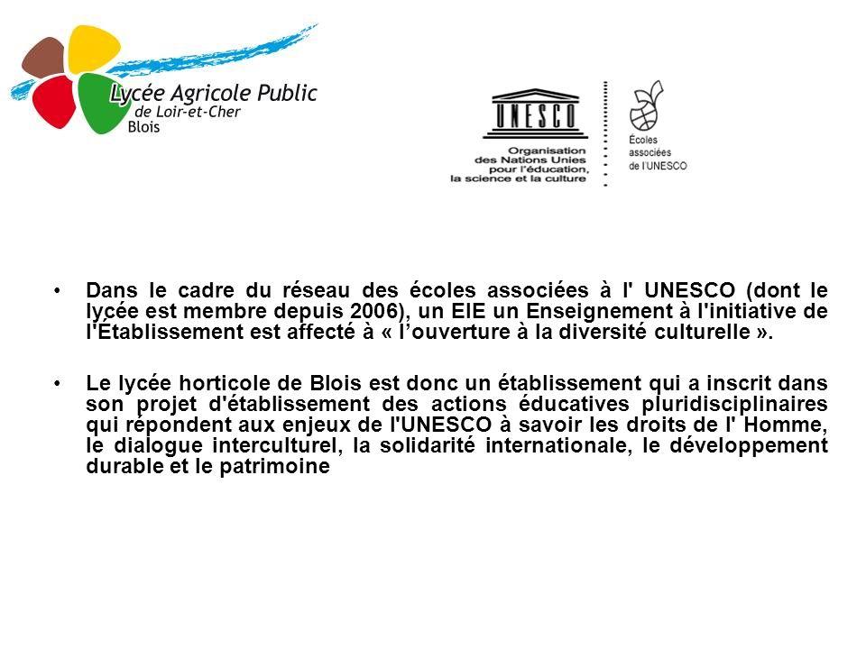 Dans le cadre du réseau des écoles associées à l UNESCO (dont le lycée est membre depuis 2006), un EIE un Enseignement à l initiative de l Établissement est affecté à « l'ouverture à la diversité culturelle ».