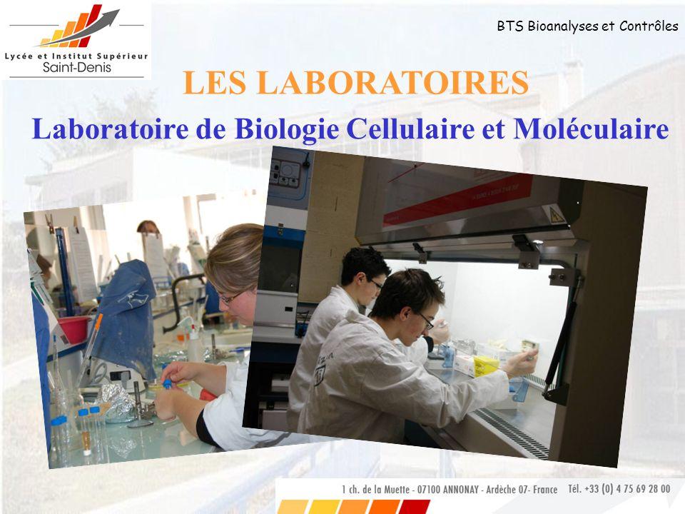 LES LABORATOIRES Laboratoire de Biologie Cellulaire et Moléculaire