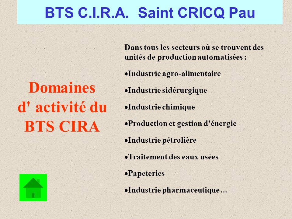 Domaines d activité du BTS CIRA