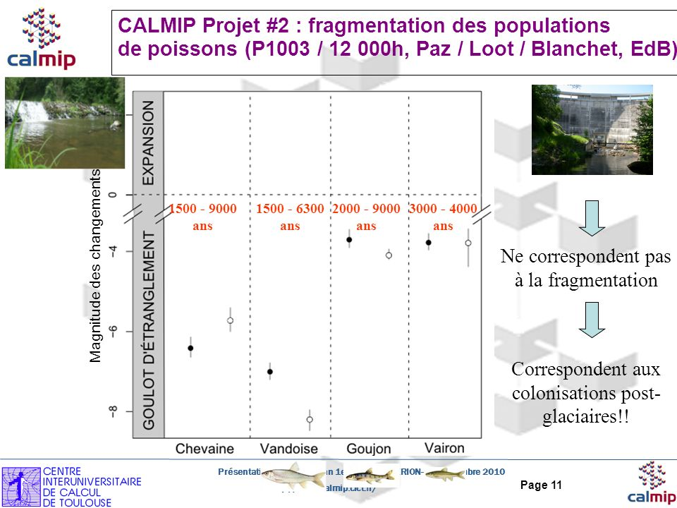 CALMIP Projet #2 : fragmentation des populations