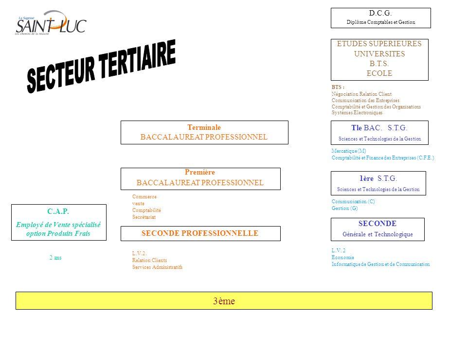 SECTEUR TERTIAIRE 3ème D.C.G. ETUDES SUPERIEURES UNIVERSITES B.T.S.