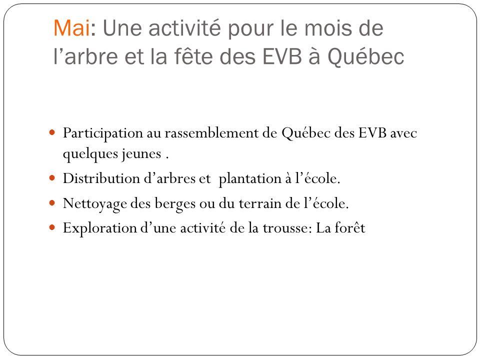 Mai: Une activité pour le mois de l'arbre et la fête des EVB à Québec