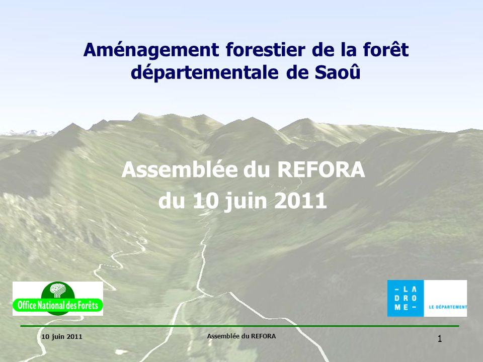 Aménagement forestier de la forêt départementale de Saoû
