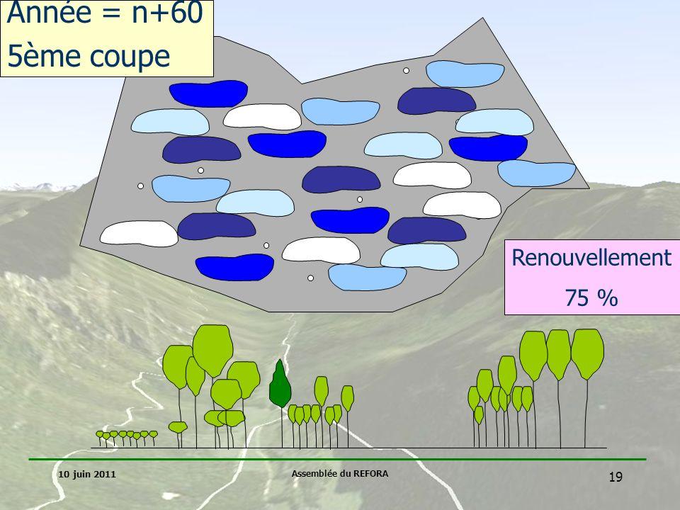 Année = n+60 5ème coupe Renouvellement 75 % 10 juin 2011
