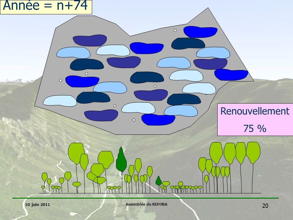 Année = n+74 Renouvellement 75 % 10 juin 2011 Assemblée du REFORA