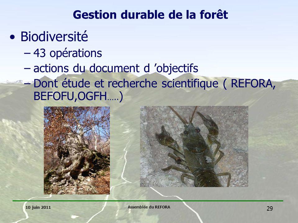 Gestion durable de la forêt