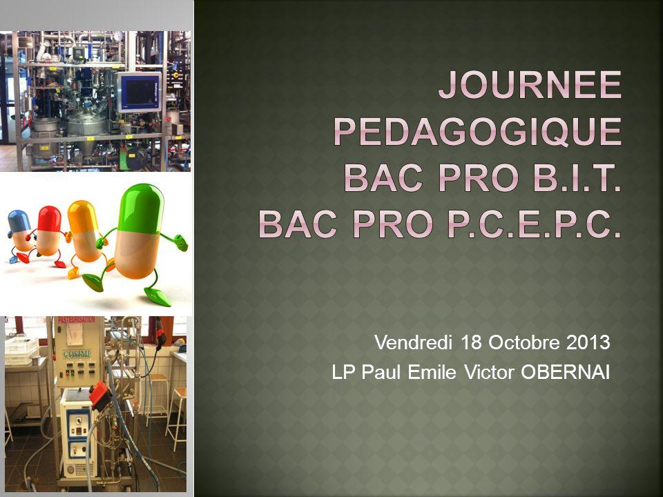JOURNEE PEDAGOGIQUE BAC PRO B.I.T. BAC PRO P.C.E.P.C.