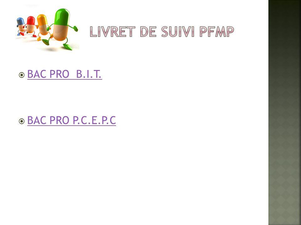 LIVRET DE SUIVI PFMP BAC PRO B.I.T. BAC PRO P.C.E.P.C