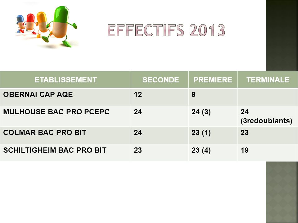 EFFECTIFS 2013 ETABLISSEMENT SECONDE PREMIERE TERMINALE
