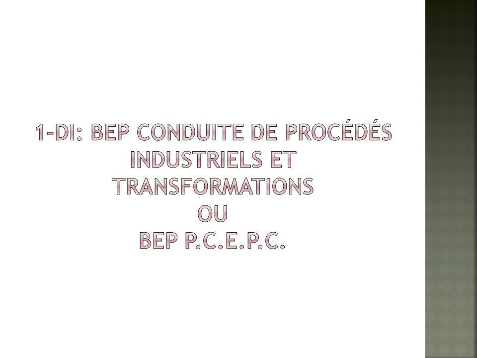 1-DI: BEP conduite de procédés industriels et transformations ou BEP P
