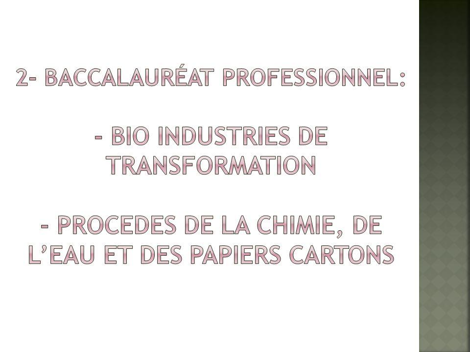 2- Baccalauréat PROFESSIONNEL: - BIO INDUSTRIES DE TRANSFORMATION - PROCEDES DE LA CHIMIE, DE L'EAU ET DES PAPIERS CARTONS