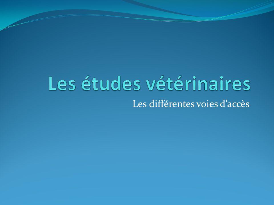 Les études vétérinaires