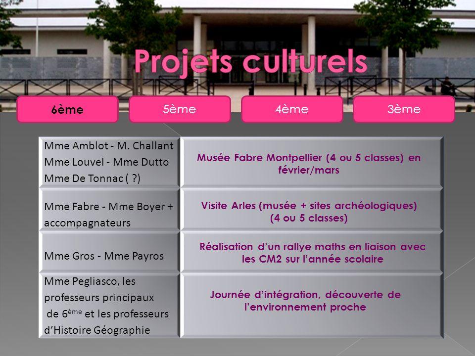 Projets culturels 6ème 5ème 4ème 3ème