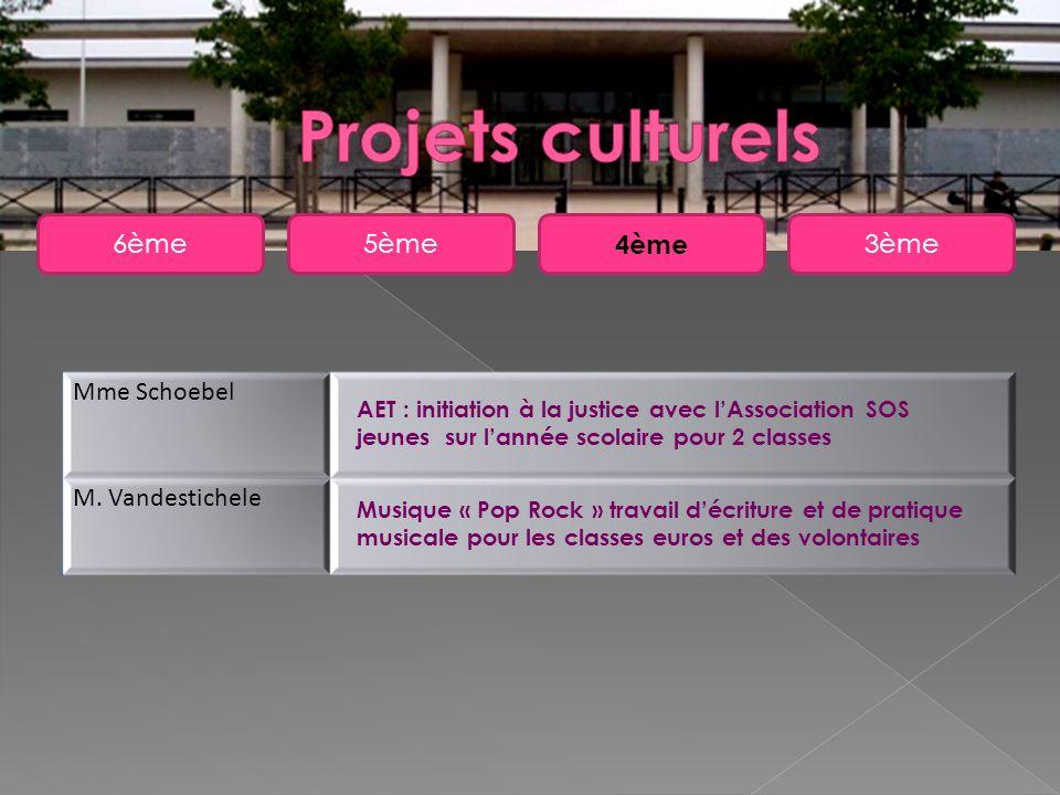 Projets culturels 6ème 5ème 4ème 3ème Mme Schoebel M. Vandestichele