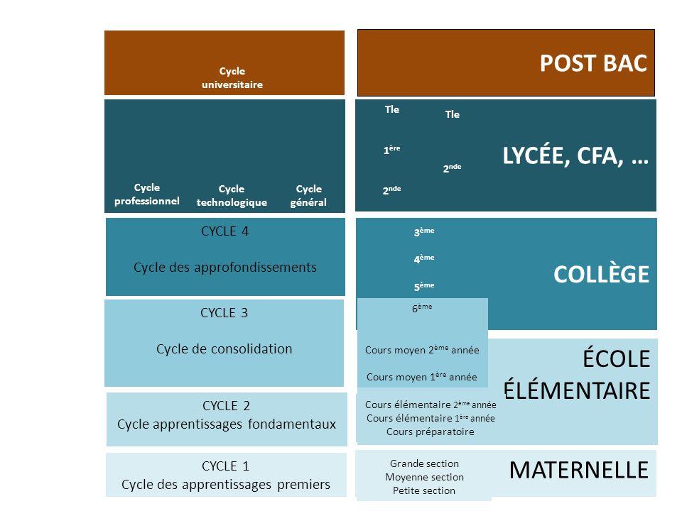POST BAC LYCÉE, CFA, … COLLÈGE ÉCOLE ÉLÉMENTAIRE MATERNELLE CYCLE 4