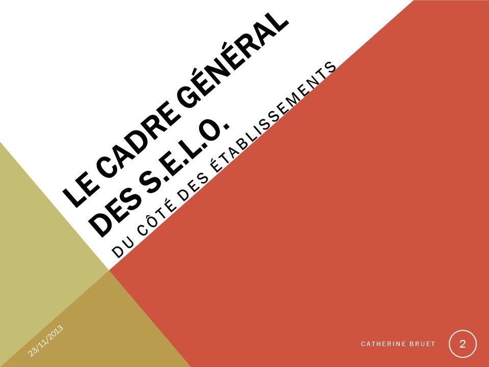 Le cadre général des S.E.L.O.