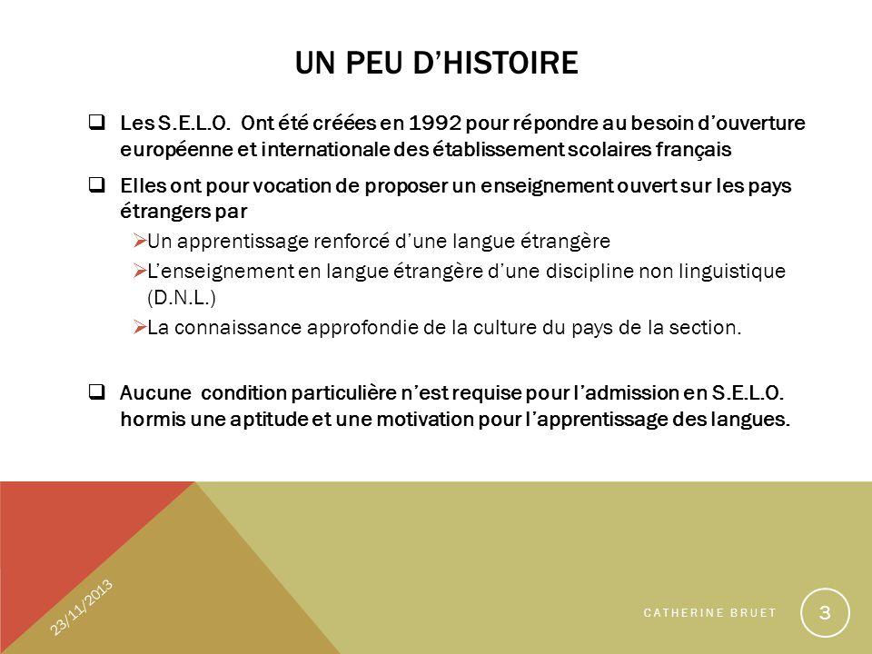 DNL et SES - Stage Académique -