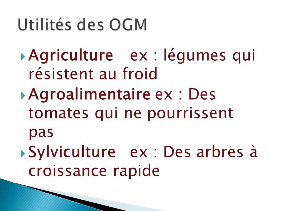 Utilités des OGM Agriculture ex : légumes qui résistent au froid