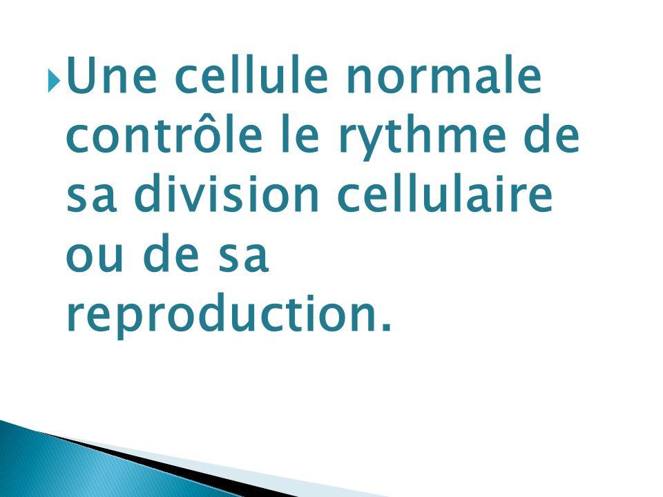Une cellule normale contrôle le rythme de sa division cellulaire ou de sa reproduction.