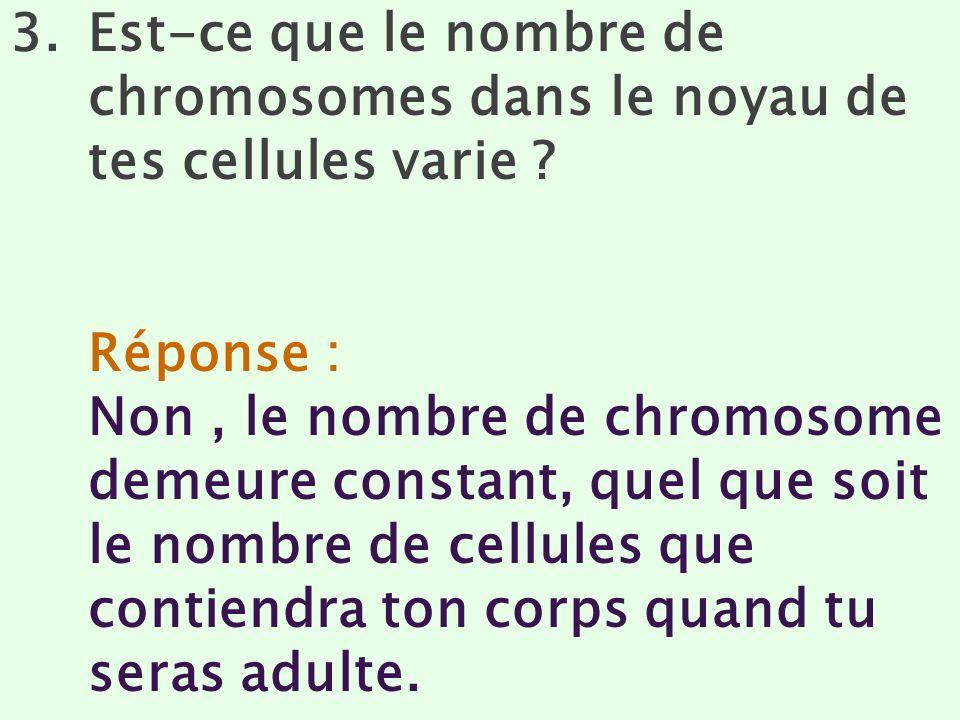 Est-ce que le nombre de chromosomes dans le noyau de tes cellules varie
