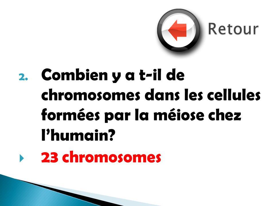 Retour Combien y a t-il de chromosomes dans les cellules formées par la méiose chez l'humain.