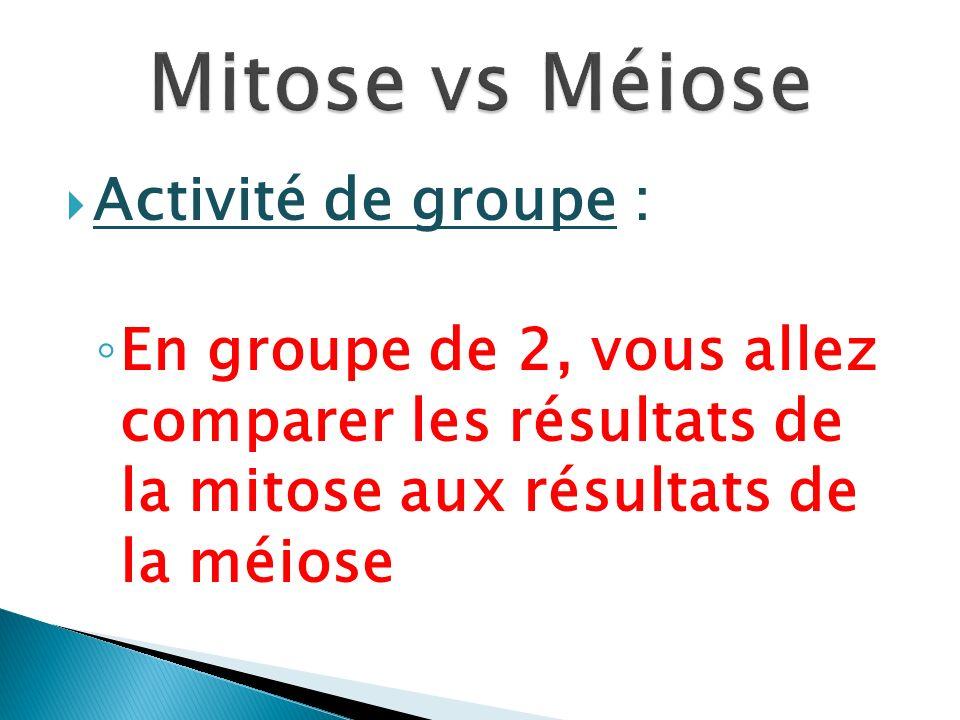 Mitose vs Méiose Activité de groupe :