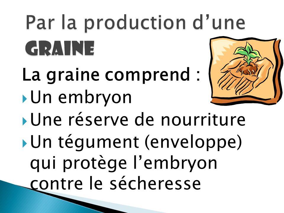 Par la production d'une graine