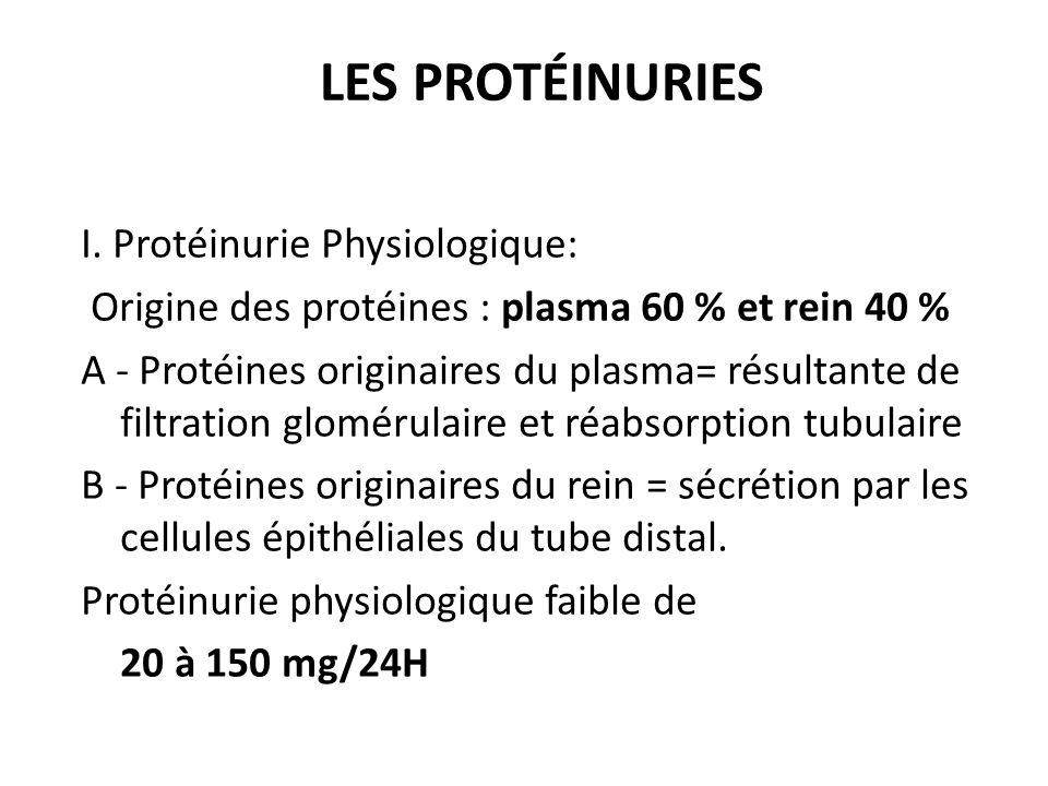 LES PROTÉINURIES I. Protéinurie Physiologique: