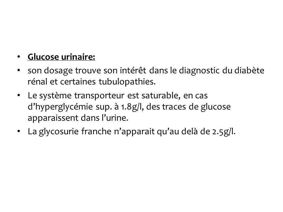 Glucose urinaire:son dosage trouve son intérêt dans le diagnostic du diabète rénal et certaines tubulopathies.
