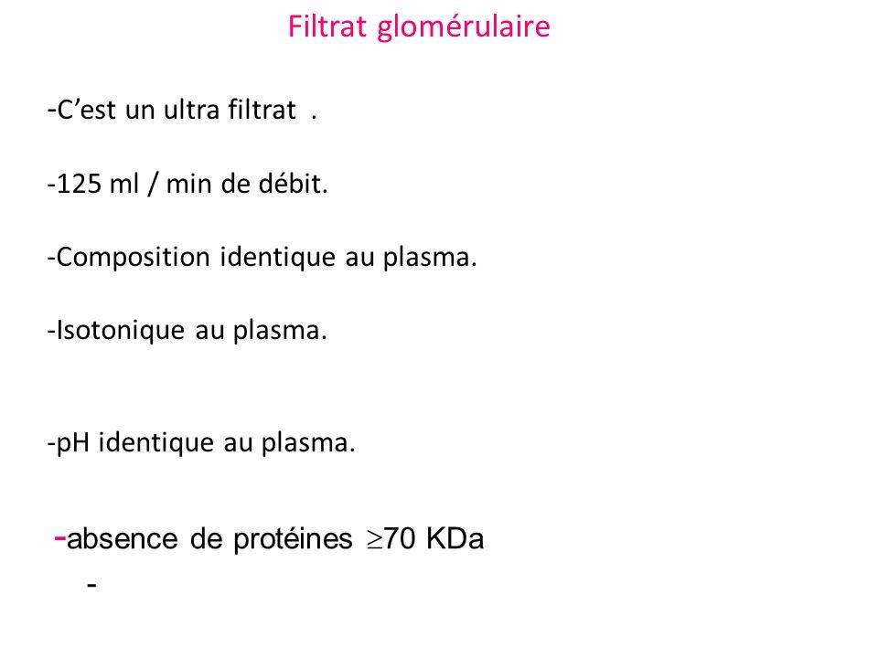 -absence de protéines 70 KDa