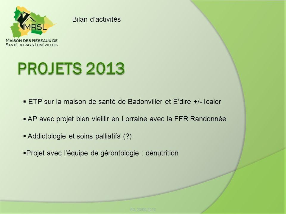 Projets 2013 Bilan d'activités
